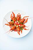 Crayfish in vegetable broth