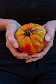 A woman holding a freshly harvested beefsteak tomato