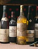 Verschiedene Weinflaschen im Weinkeller