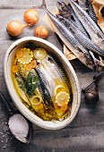 Mackerel in olive oil