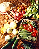 selection of fruit and vegetables - peaches, apricots, melons, lemons, tomatoes, courgettes and cucumber