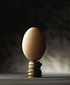 Symbolbild: ein braunes Ei auf einem Turm aus Münzen