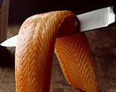 Salmon fillet on knife