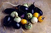 Selection of eggplants