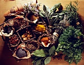 Selection of spices and herbs