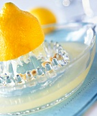 lemon and lemon squeezer
