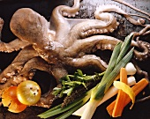 Octopus and vegetables