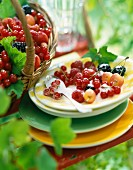A dessert with forest fruits outside