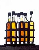 Flaschen mit Rum verschiedenen Alters