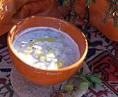 Moroccan Cucumber Yogurt Dip