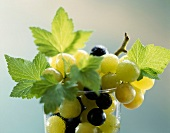 Black and white grapes