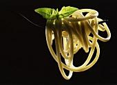 Spaghettis on a fork