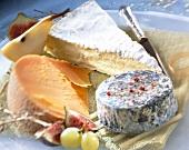Käseplatte mit Gouda, Brie und Rochebaron
