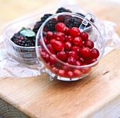 Cranberries and blackberries