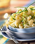 Cavatappi with leeks and sweet onions
