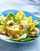 Crouton, walnut, Parmesan and lettuce salad