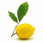 Lemon with leaf
