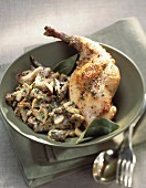 Rabbit and mushrooms with mustard sauce