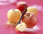 Stillleben mit frischen Äpfeln auf Zucker, Vanilleschote und Zimtstange