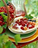 garden summer fruit with sugar