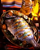 Sea bream with preserved lemon