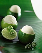 Lime and honey ice cream