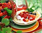 Fresh summer fruit with sugar