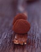 Chocolate and rum truffles