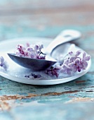 Crystallized lilacs