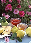 Quince jelly and quince jam