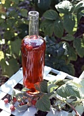 Bottle of raspberry vinegar outdoors