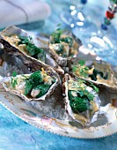 Oysters with chervil