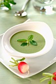 Chilled creamed radish top soup