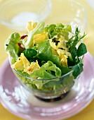 Mixed green lettuce salad