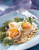 Pan-fried scallops with romanesco cabbage