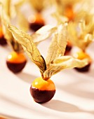 Chocolate-dipped Physalis fruit