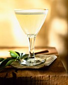 Pisco sour drink