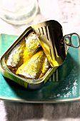 Sardines in hot and spicy olive oil (Topic : olive oil cooking)