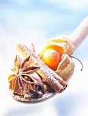 physalis, cinnamon, clove, star anise 3