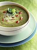 chilled courgette and sweet curry soup