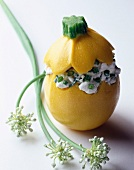 Yellow courgette stuffed with cottage cheese, garlic and spring onion (topic : cottage cheese)