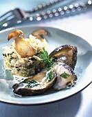 Seeohr mit Knoblauchcreme und Kohl-Buttergemüse