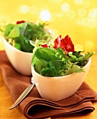 Mixed green salads in bowls