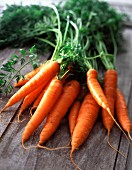 Carrots with their tops