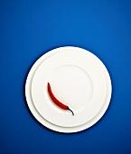 Rote Chilischote auf weißem Teller