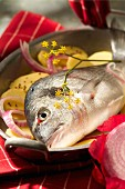 baked sea bream (topic: Provence)