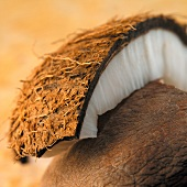 Piece of coconut
