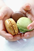 Hands holding macaroons
