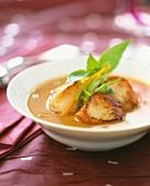 Pan-fried scallops in stock