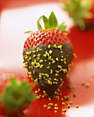 Strawberry dipped in chocolate with pistachio